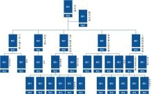 公司人员分布组织结构图